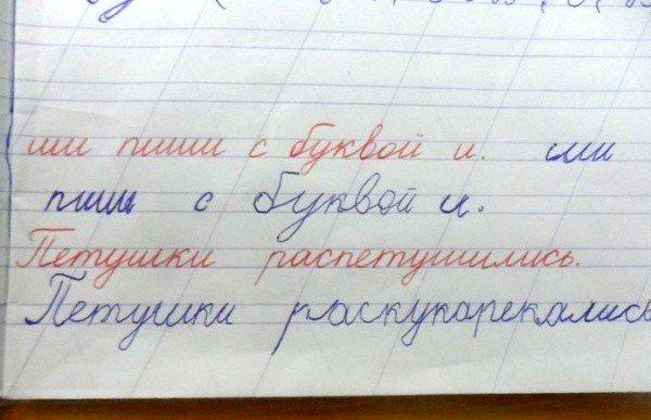 Смешные записи из тетрадей школьников