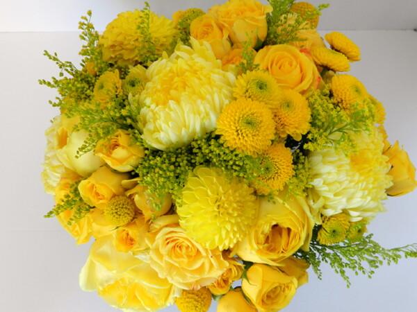 Выбирайте цветы по своему знаку Зодиака!